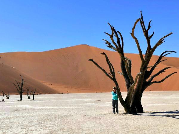 De prachtige zandduinen in Namibië