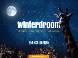 winterdroom Beekse Bergen