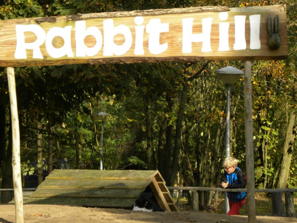 Konijntjes bij Rabbit Hill