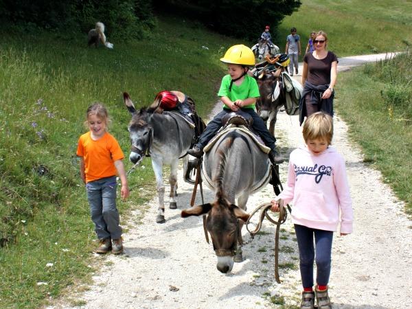 Kinderen vinden wandelen met ezels geweldig!