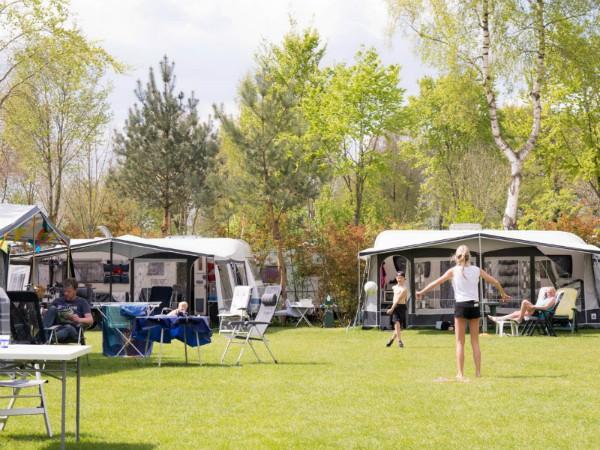 Kindercamping Ackersate op de Veluwe