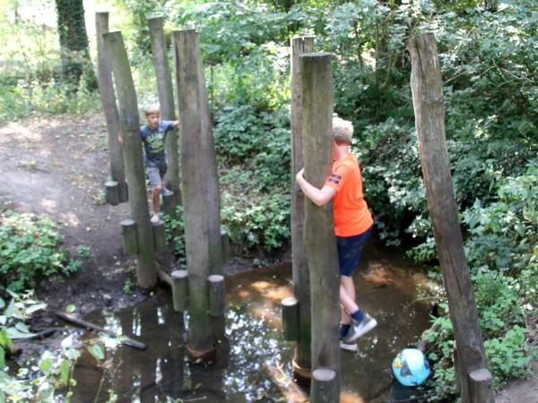 Klimbos in Recreatiepark Het Hulsbeek
