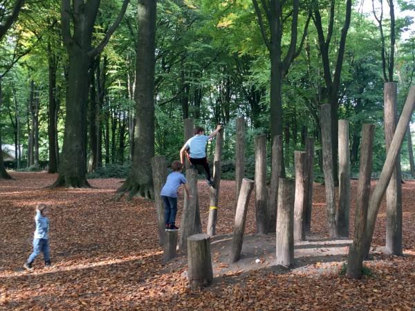 Spelen in het Kluisbos in de Vlaamse Ardennen