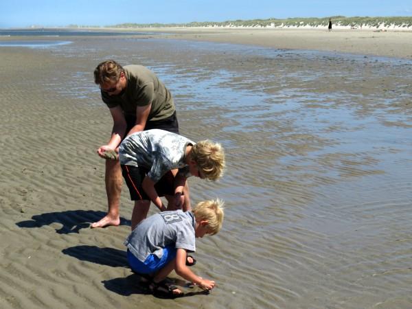 kreeftjes vangen op het brede strand van Terschelling