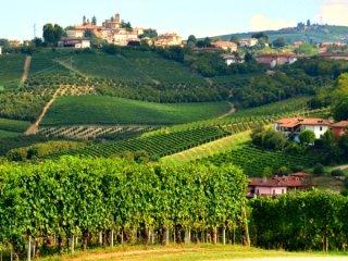 Het prachtige heuvellandschap van Piemonte