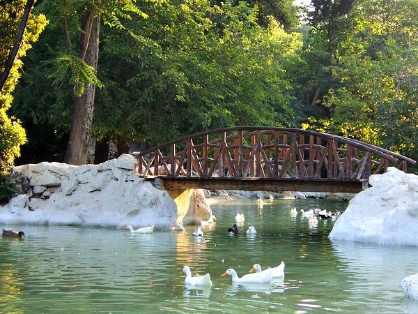Vijver en bruggetje in de Nationale Tuinen van Athene