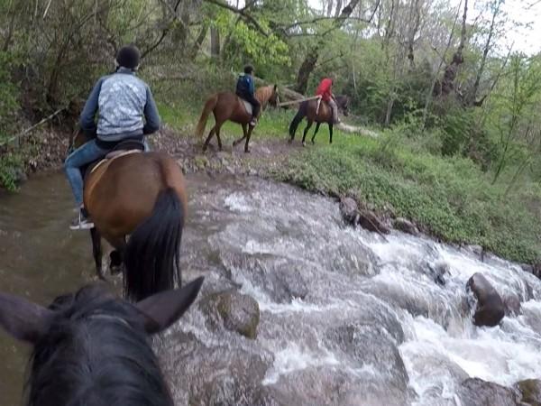 We steken een beekje over bij het paardrijden in de pyreneeën
