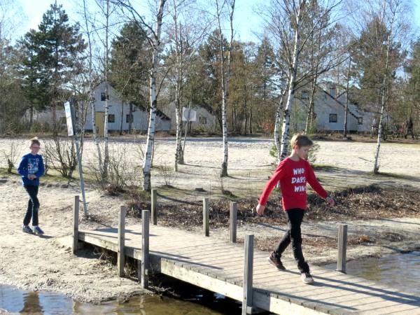 Mooie zwemvijver en huisjes bij Sunparks de Kempen