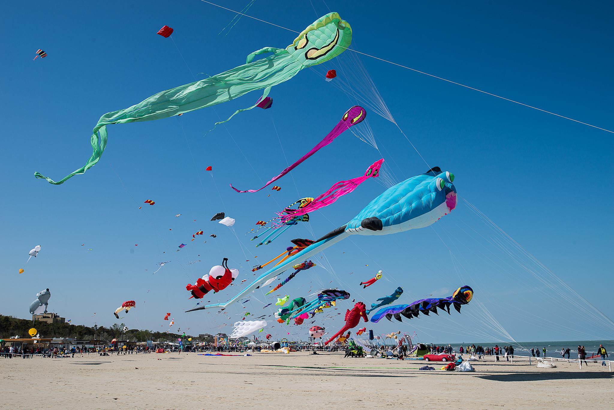 Het vliegerfestival in Cervia