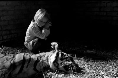 Amaris verdrietig bij haar net overleden lievelingstijger Myra