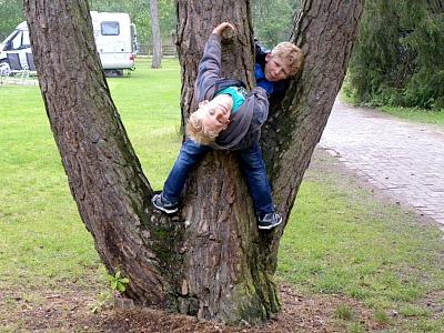 boompje klimmen bij Beerze Bulten