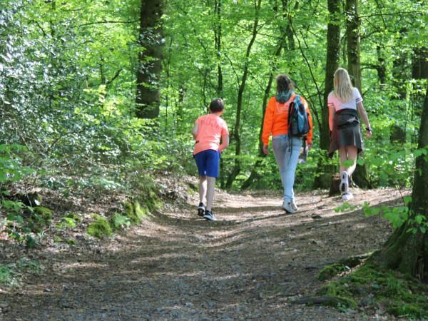 Wandelen in de bossen van het Bergischeland