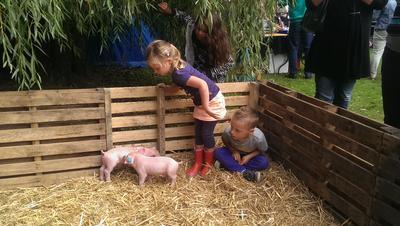 Biggetjes knuffelen op de boerderij