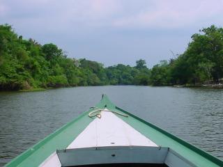 In een bootje op zoek naar de dieren in de Amazone