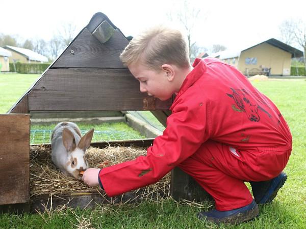 Nick aait het konijn op de Farmcamps camping