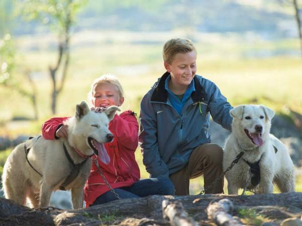 kinderen knuffelen husky honden