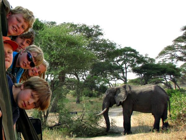 Met Djoser Junior naar Tanzania