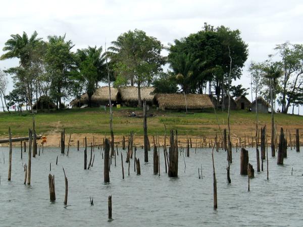 Boomtoppen steken nog boven het water uit in het Brokopondomeer bij Tukunari eiland
