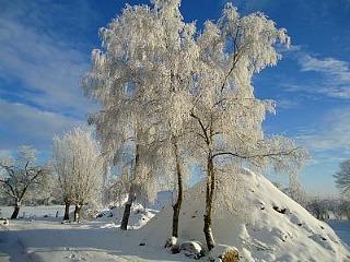 Winters plaatje bij Erve Getkot