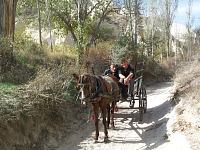 Met paard en wagen door Cappadocië