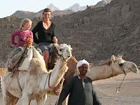 Op een kameel tijdens een Fox rondreis