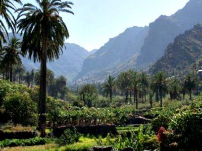 De prachtige natuur van Noord-Tenerife