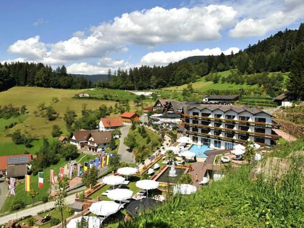 luchtfoto van hotel dollenberg, zwarte woud