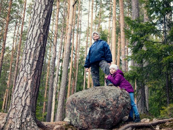 Lekker wandelen in de Finse natuur