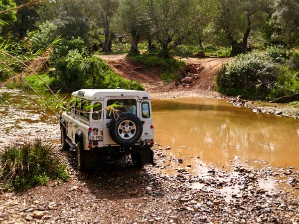 Een stoere jeep-safari door de natuur