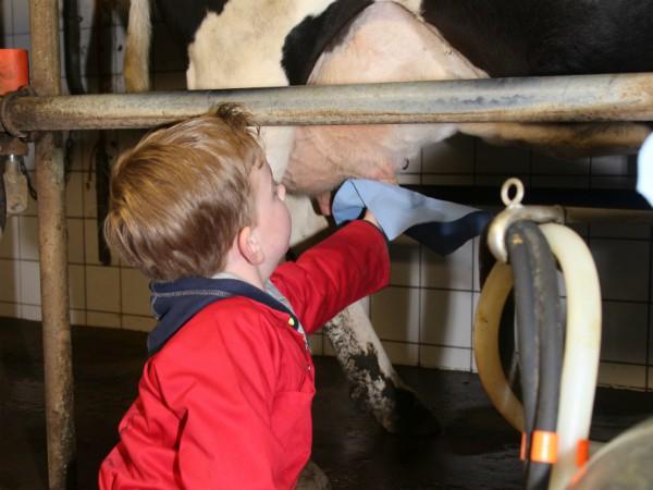 Je eigen koe moet ook gemolken worden...