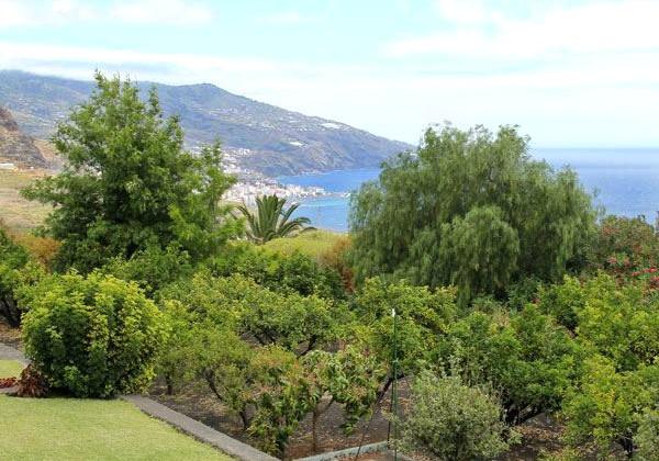 Het mooie, groene La Palma
