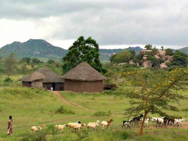Het prachtige landschap van Tanzania