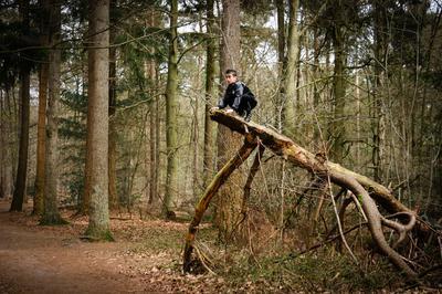 Wat is er nou leuker dan lekker boompje klimmen?