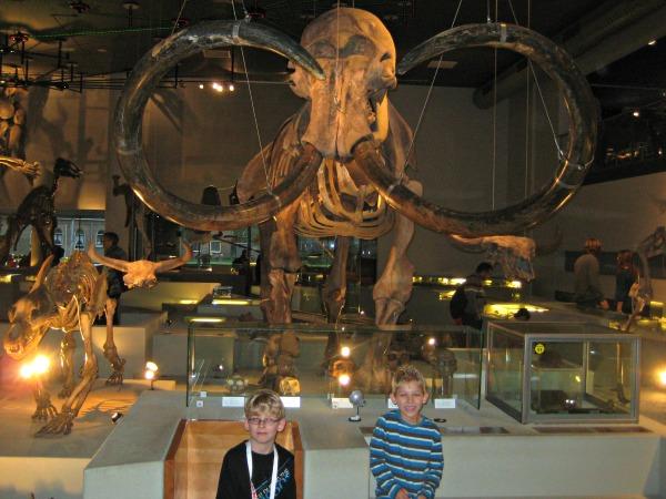 Bij het Mammoet-skelet in Naturalis