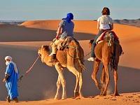 Op een kameel door de Marokkaanse woestijn