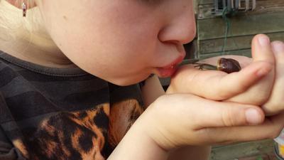 Een kus voor de slak