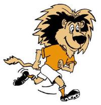 voetbal leeuw
