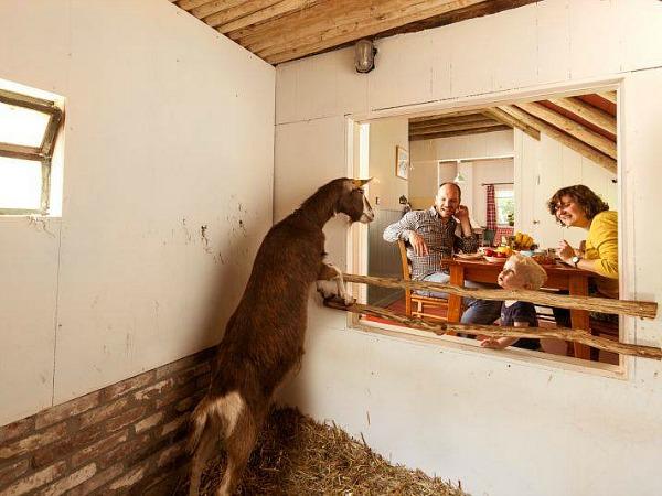 plaggenhut met stal