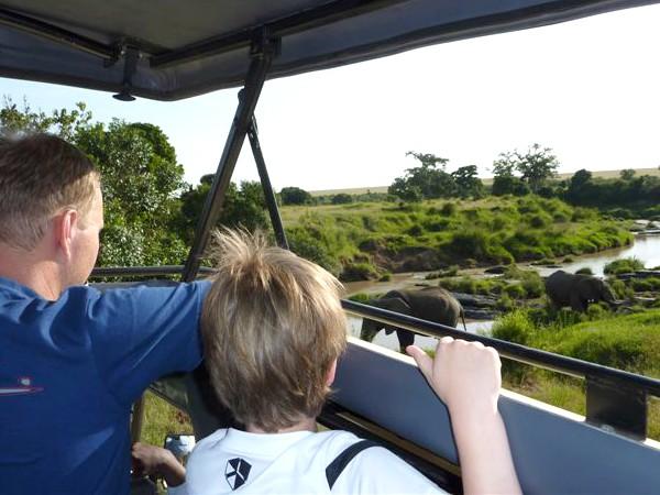 Olifanten spotten vanuit de jeep