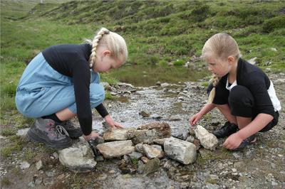 Samen een dam bouwen