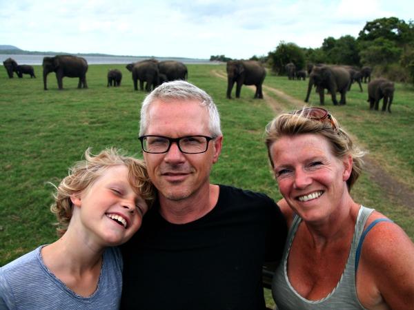 Op safari kom je zeker wilde olifanten tegen