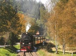 Met een stoomtrein door de Harz in Duitsland