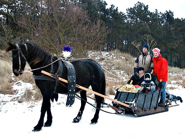 Winters genieten met een leuke arrensleetocht bij Puur Terschelling