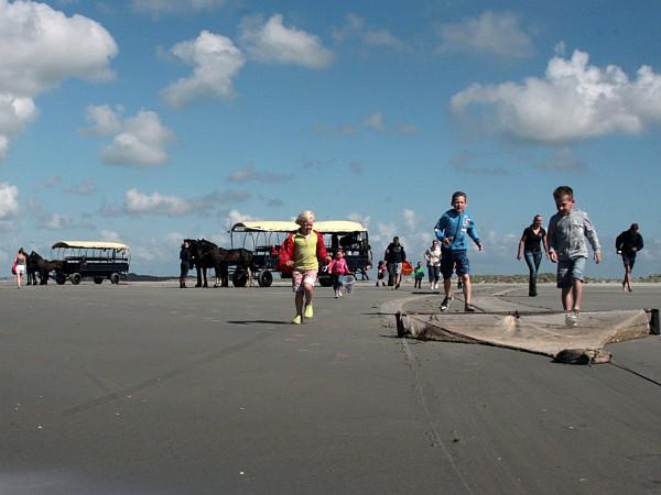 Noordzeetocht met garnalen vangen bij Puur Terschelling