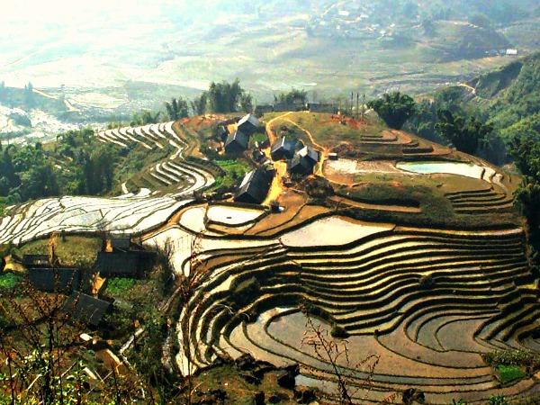 Prachtige rijstvelden in de bergen van Vietnam