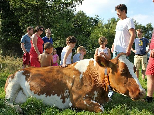 Alle gasten bij Farmcamps krijgen een rondleiding op de boerderij