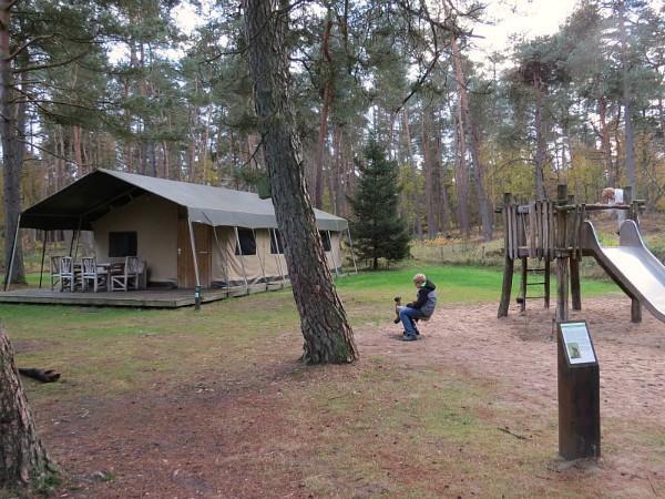 Ook safaritenten bij Landal Coldenhove!