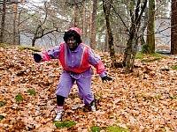 Zwarte Piet bij Landal