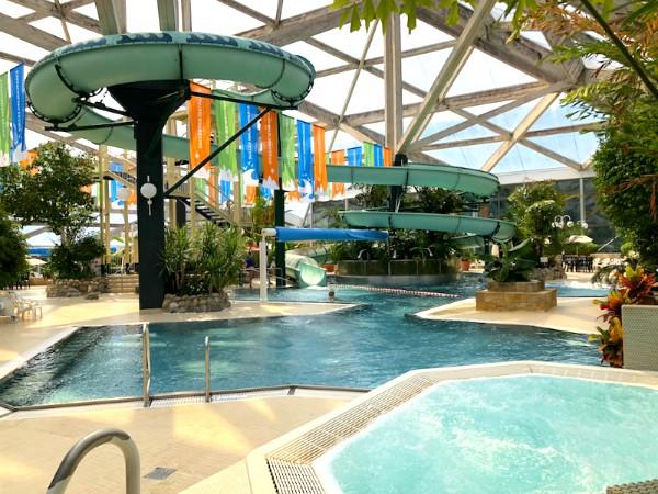 Het mooie subtropische zwembad