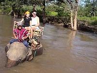 Op een olifant door het water